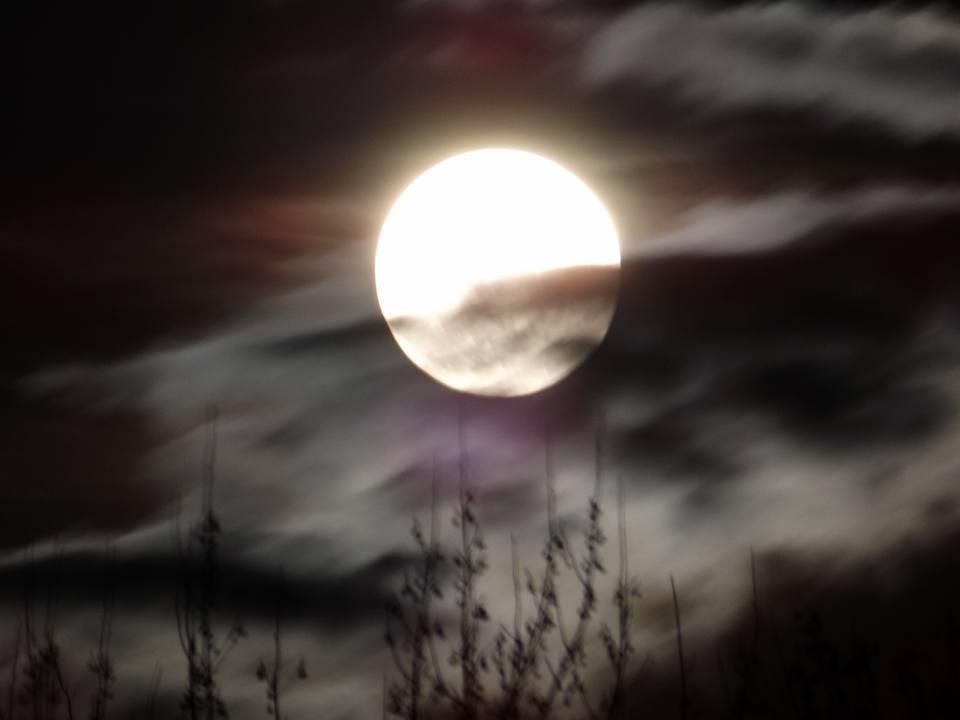 Tonight's full moon. Indiana