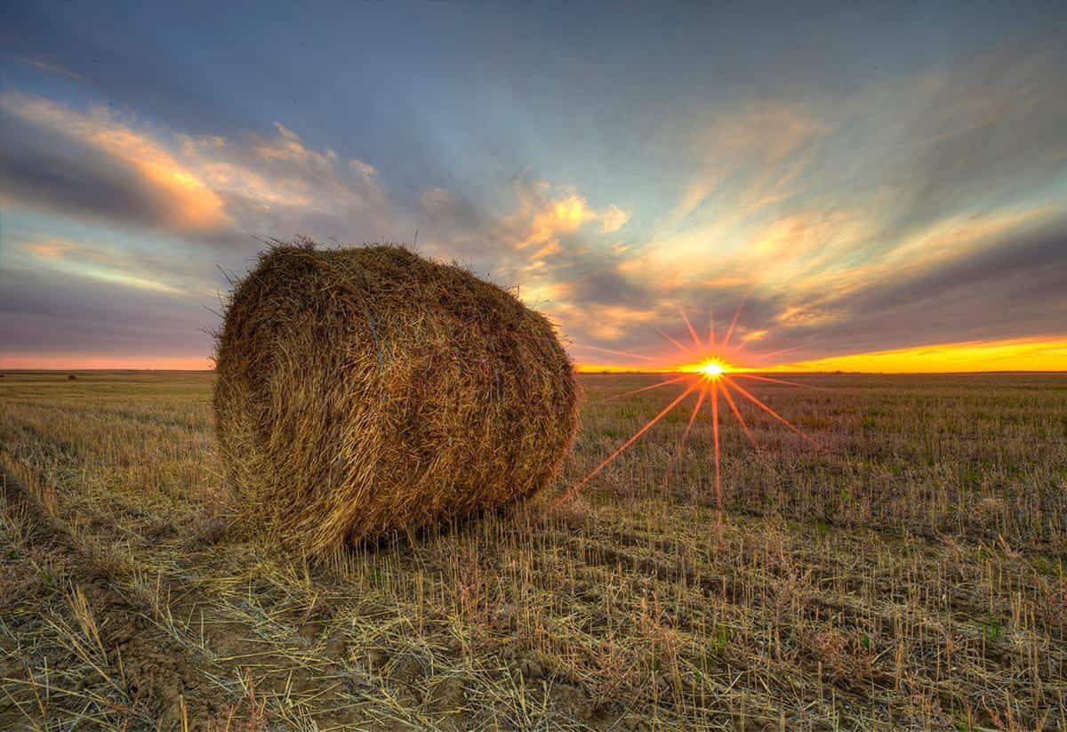 Another Saskatchewan Autumn sunset with wispy cirrus clouds
