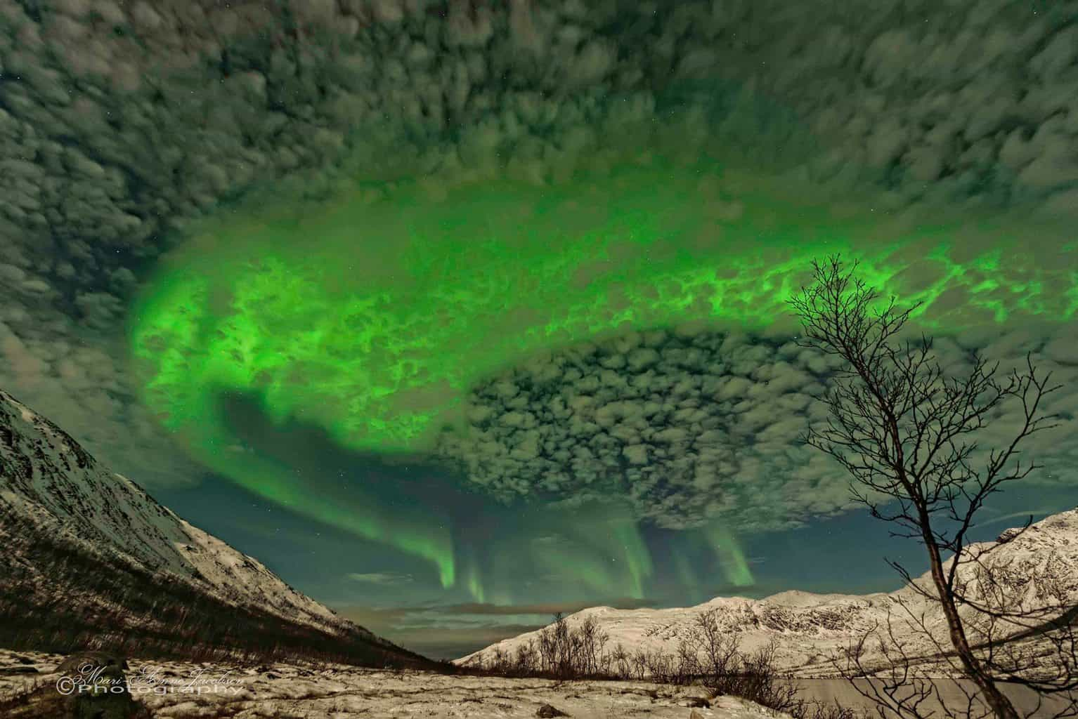 Weather report from Tromso Norway  Aurora Nikon D600 Aperture : f2.8 ISO:2000 Exposure 25/10 Focal L: 140/10