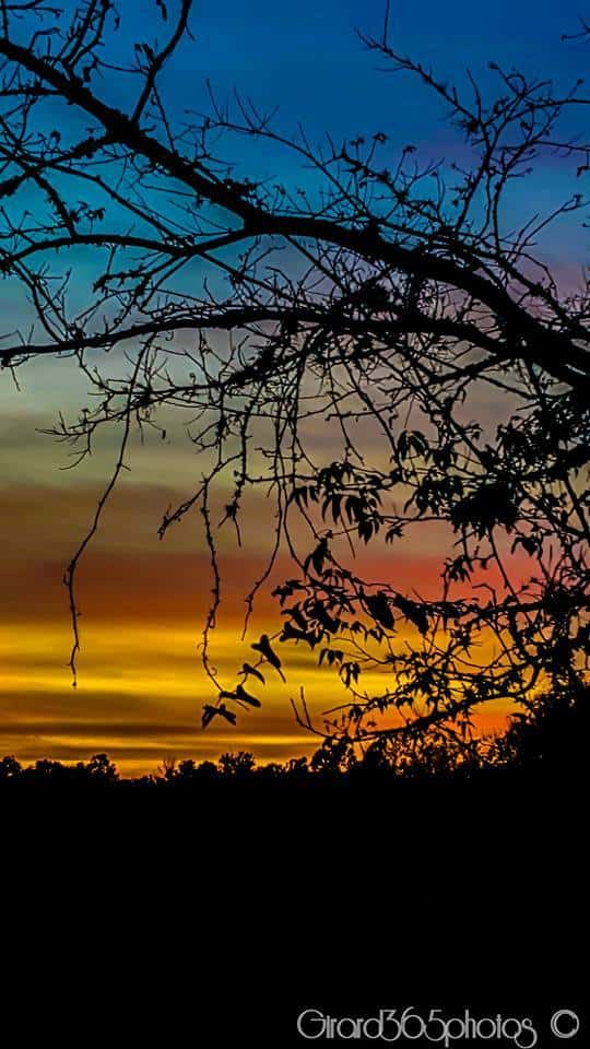 Sunset From Mondon Hill, Hernando County Florida