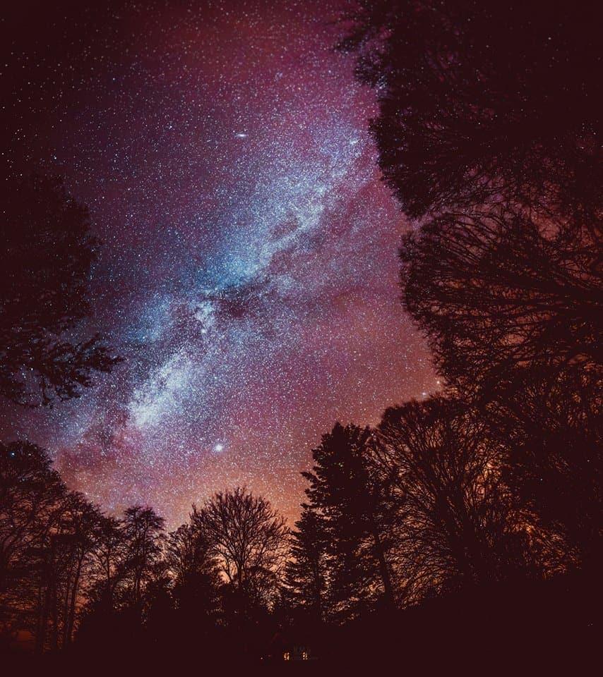 Tonight's Milky Way over Højriis forest, Denmark.