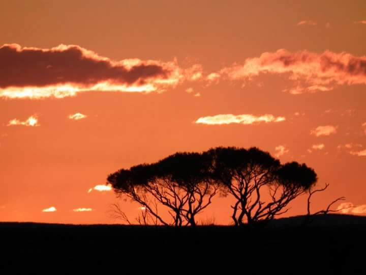 Taken a few years back by Ian Moon somewhere in the outback