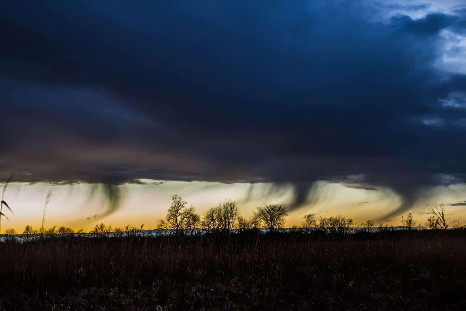 Fun looking wind blown rain shafts at the back end of a line of rain showers in Jackson County Michigan on 12/14/2015. At times they almost looked like tornadoes. The photo was a little challenging, I was standing in a swamp with strong winds and light rain showers hitting my lens.