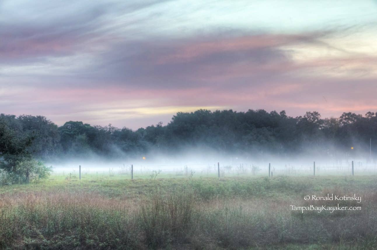 Foggy Morning at the Field - 12-22-2015 — inValrico, Florida.