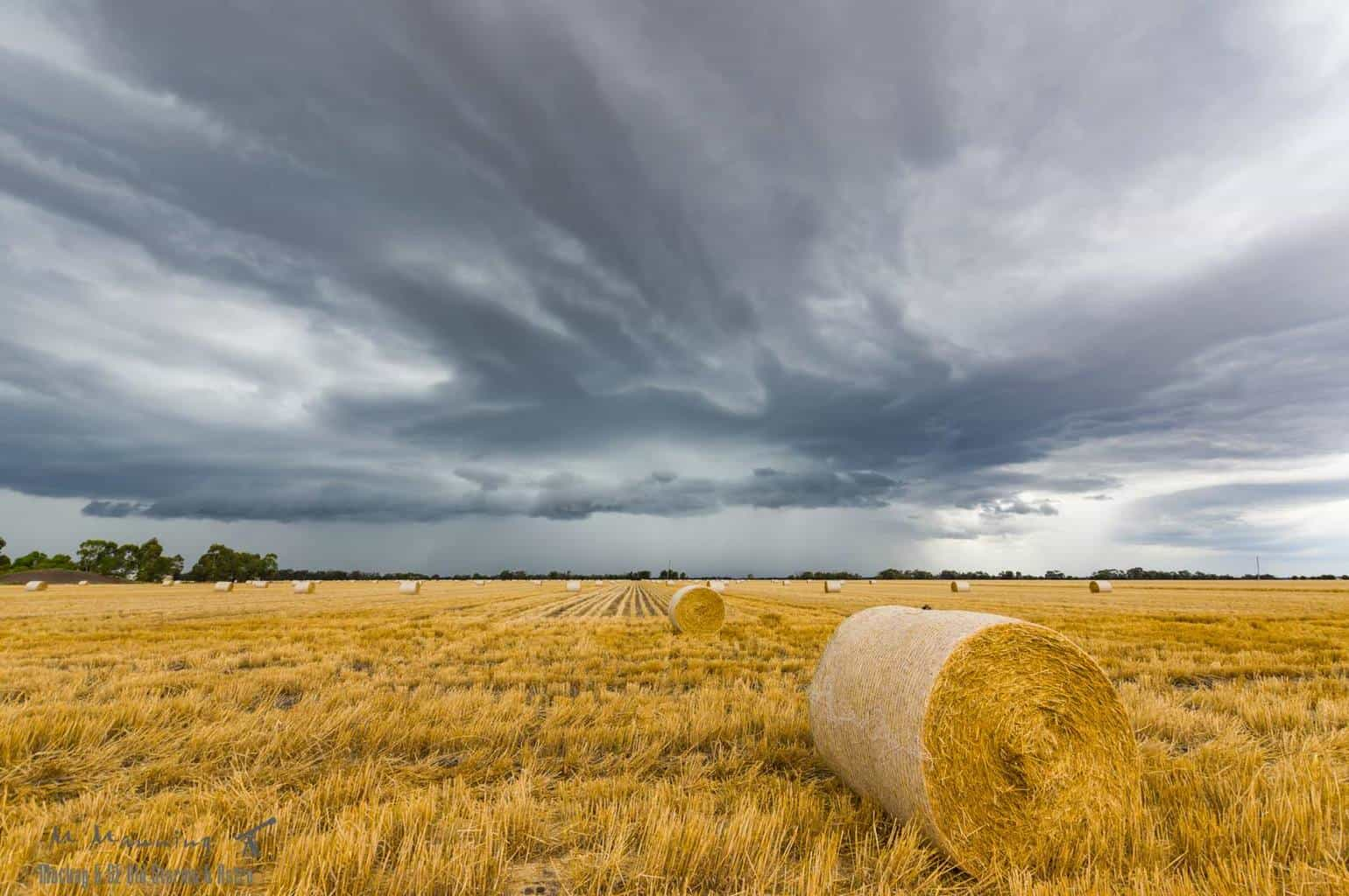 An afternoon storm rolls through Dalby in SE Qld on the 16th November with some fantastic foreground.