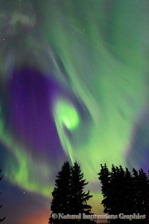 """Aurora Note"" This one reminds me somehow of music, like a note or two to go along with the dance across the skies. Even if you cannot hear the music, I am sure it would be beautiful . Love the Aurora, taken in August 2015 in Alberta, Canada"