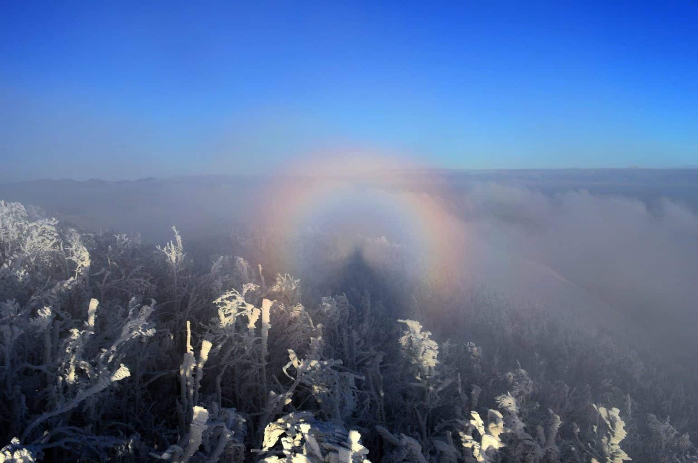 Glory phenomenon an hard rime on Javornik Mt., Slovenia (December 31th 2015).