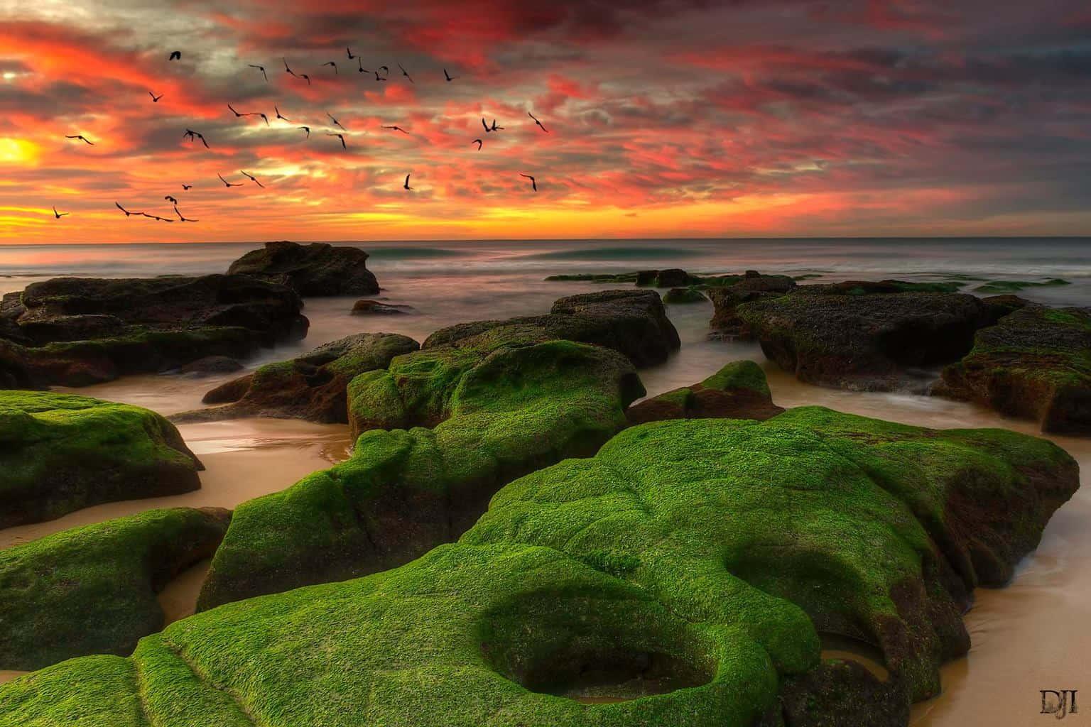 Sunrise from Merewether Beach Newcastle Australia.