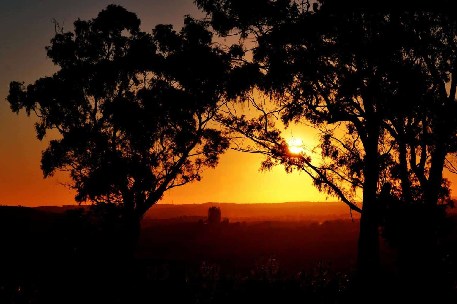 Sunset at 800m above sea level - Southern Highlands, Australia