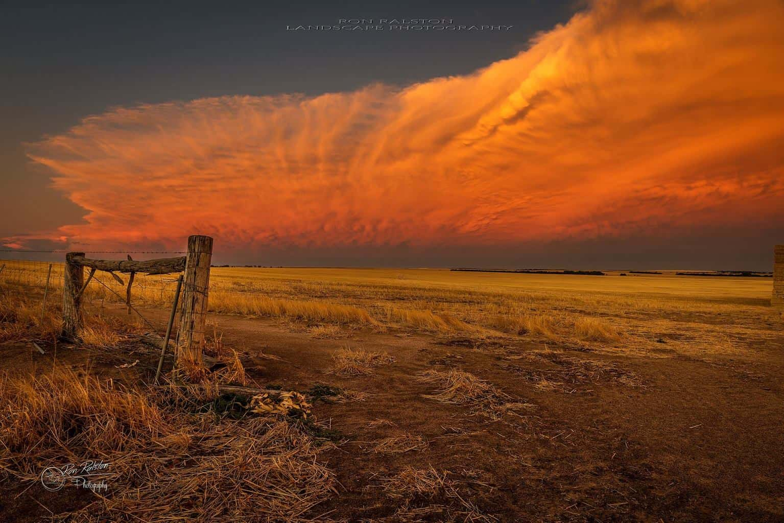 Sun setting in the Wheat belt of Western Australia on the most amazing cloud I have seen