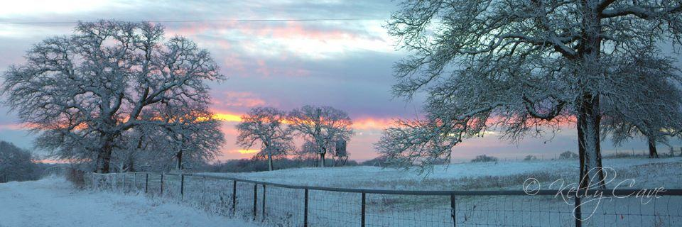Sunrise after the snow 12-29-15 Happy New Year everyone!