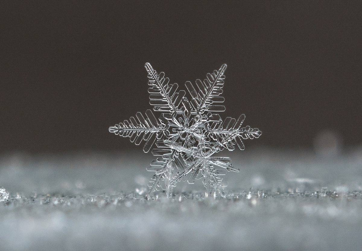 Snowflake, czech republic 19.january 2016