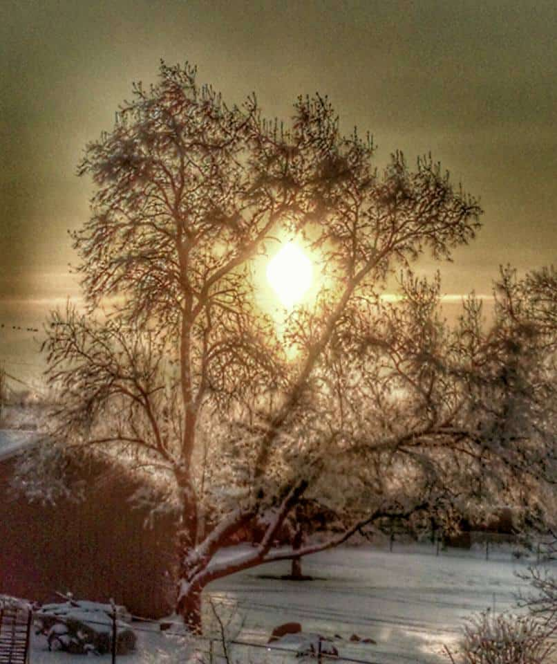 """At the risk of sounding like a broken record...  """"Baby its Cold Outside"""" Chubbuck, Idaho  (-12 this am)"""