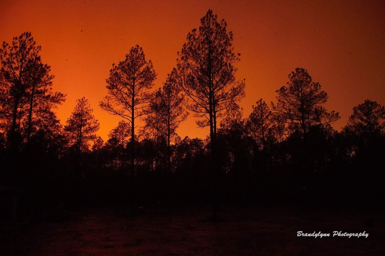 The sky looked like it was on fire this evening just before sunset. It was still raining complete with lightning and all. I have never seen the stormy sky look like this! This is ZERO editing. Straight from the camera. Taken from my back porch in Abita Springs, LA a few hours ago.