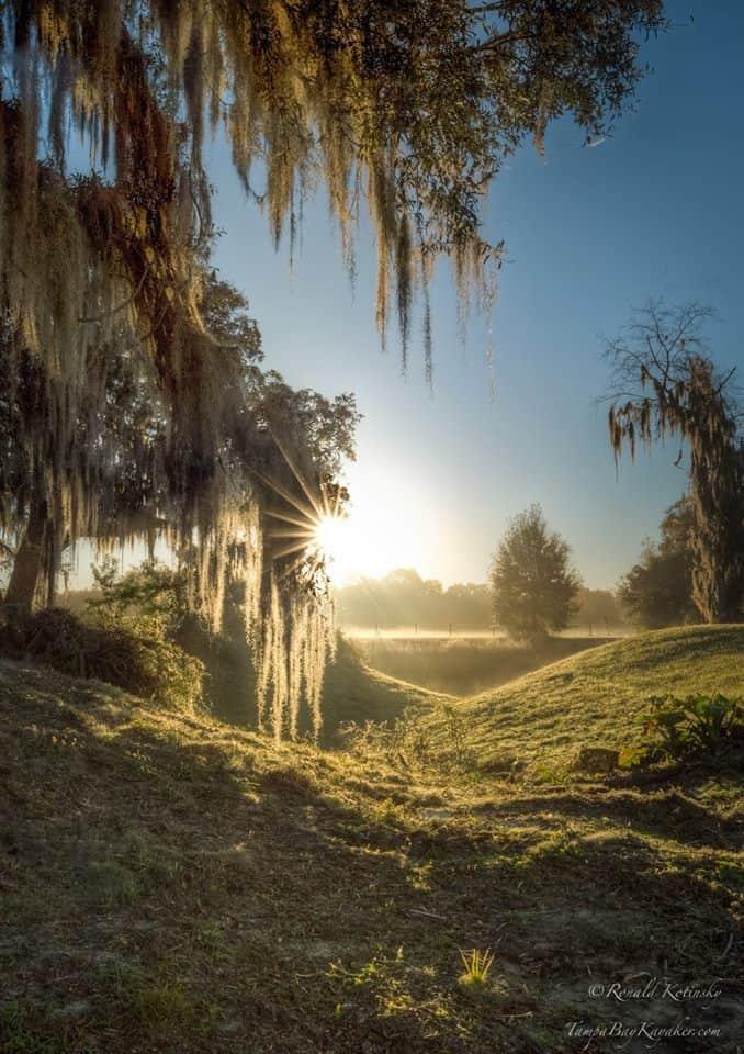 The Enchanted Hollow - Valrico Florida - Feb. 2016