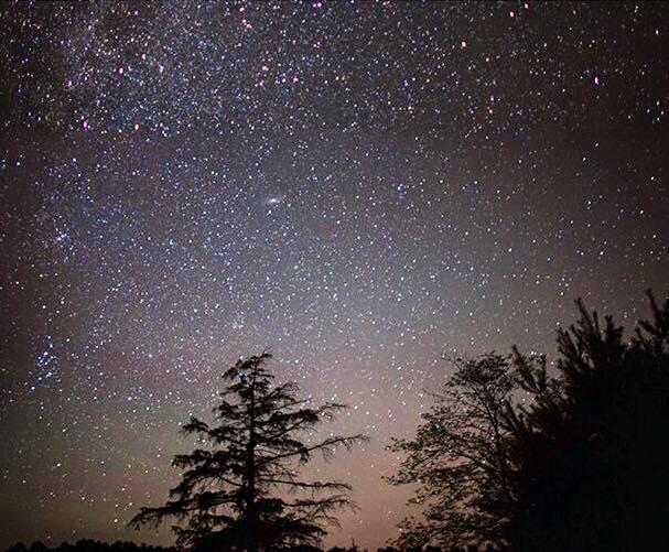 Twinkle twinkle lots of stars.... Muskoka, Ontario, Canada