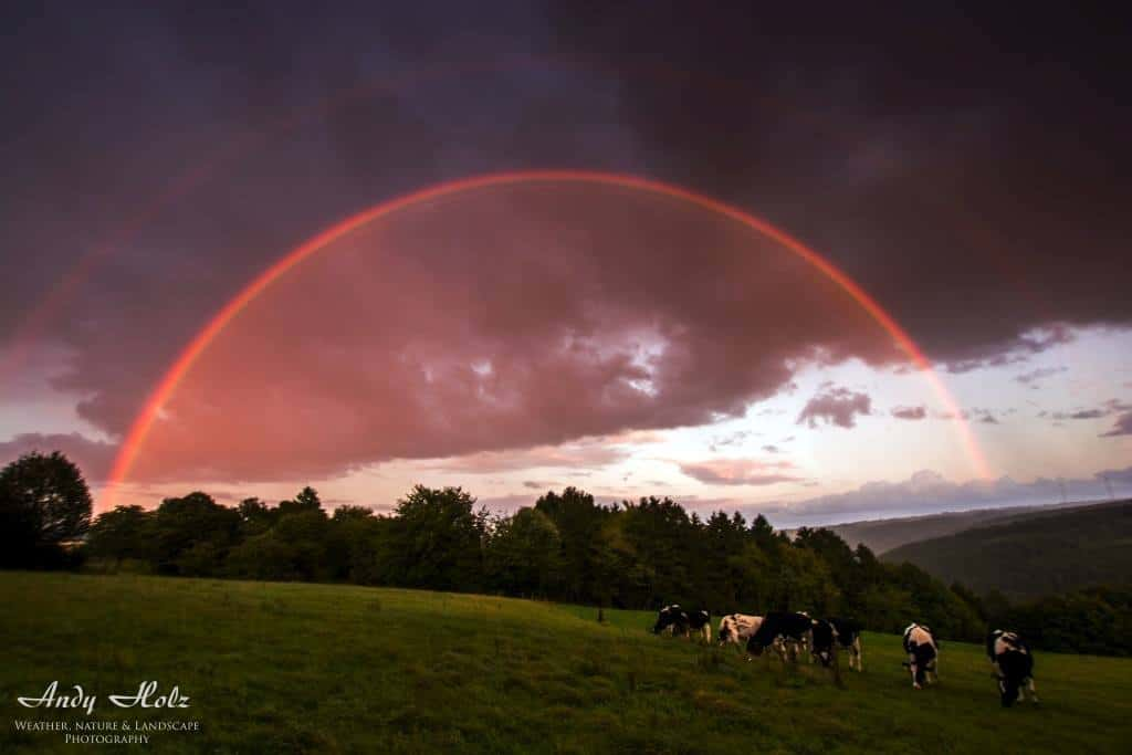 Beautiful double sunset rainbow at home, Huertgenwald/Germany. Sep 14th 2015