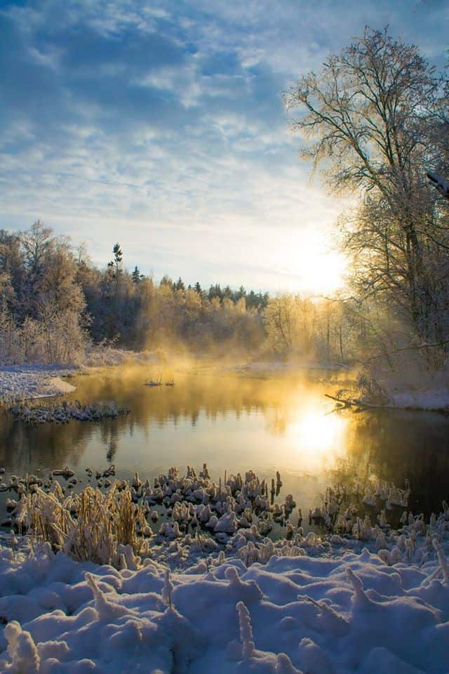 The beauty of winter in Estonia, January 2016.