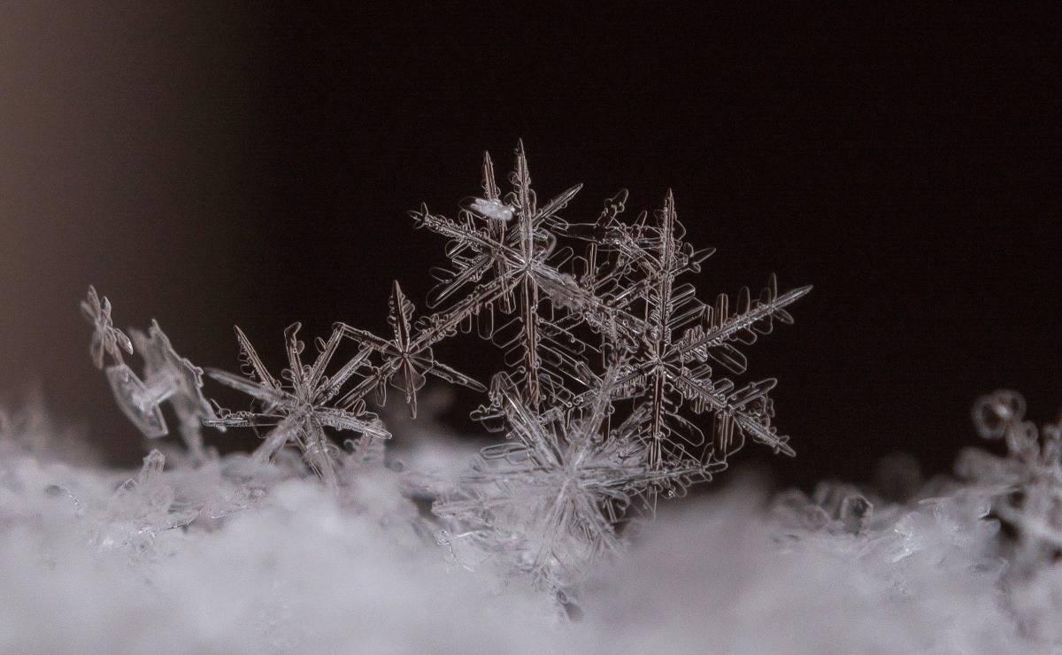 Snowflakes group, czech republic 17.january 2016