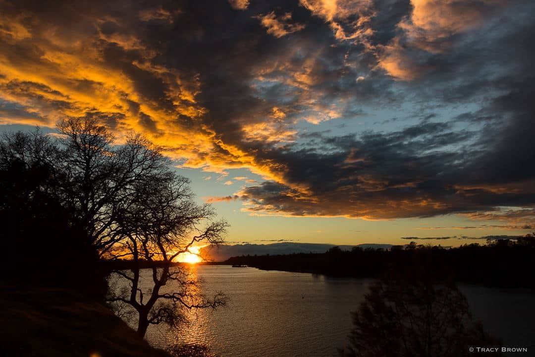 Sunset taken on the American River Bike Trail. ~Folsom, CA