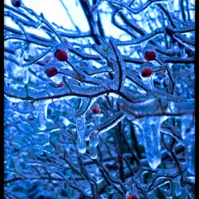 2-12-2016 no snow but we got ICE!!! North Carolina
