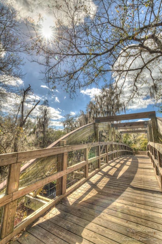 A Bridge over the Alafia River - Feb.2016 — in Plant City, Florida.