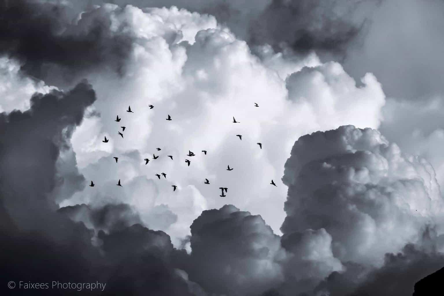 Flight to the heaven