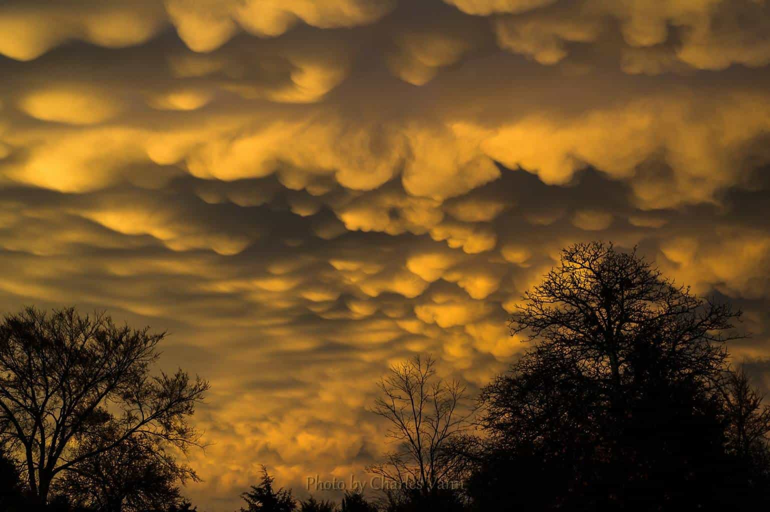 Here in Eastern Oklahoma, we had storms and rain all day... Then the sky opened up to highlight the beautiful Mammatus Clouds at sunset.