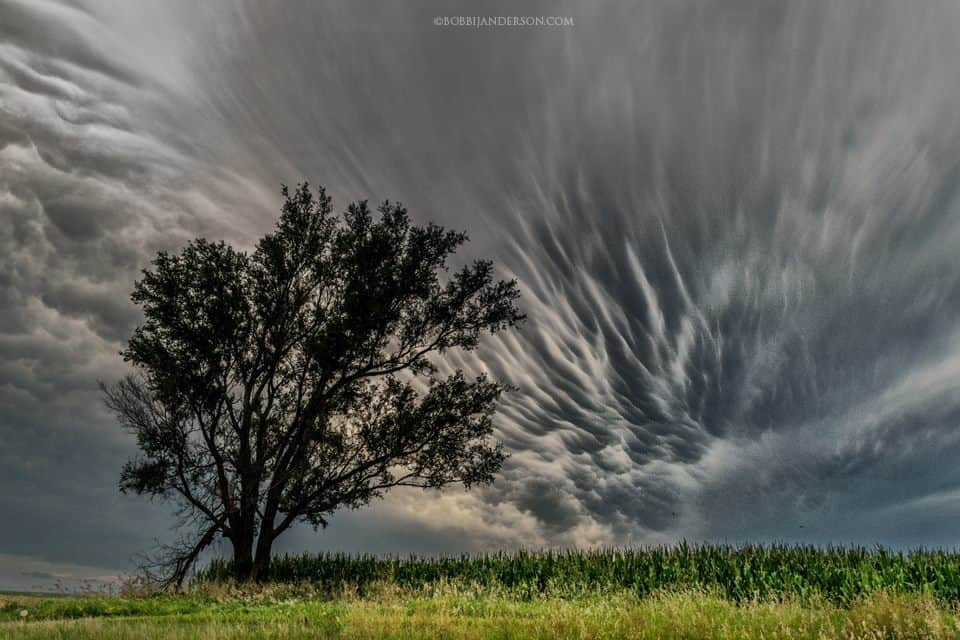 """STRIATIONS"" another crazy Mammatus day here in the Heartland last summer one night while out chasing skies, got the treat of these incredible looking Mammatus, it just stretched on and on across the sky. Shot in Eastern Nebraska 2015."