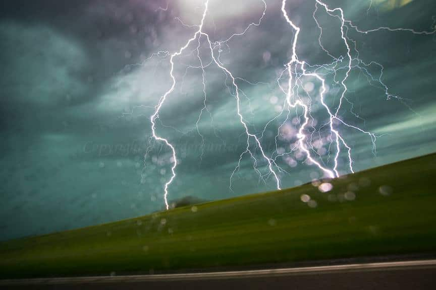Bolt on the move somewhere in Montana - June 17th 2015 with Marko Korosec.