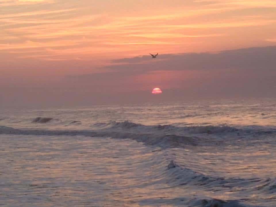 OIB sunrise