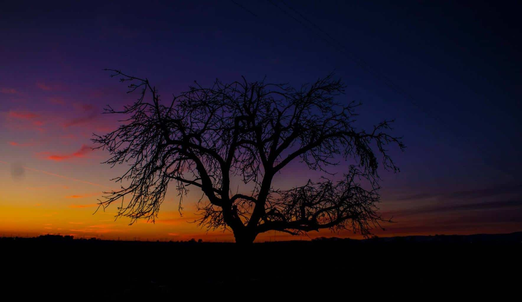 Thank you for accepting me to the group. I shot this image this morning at dusk. San Francisco, East Bay area