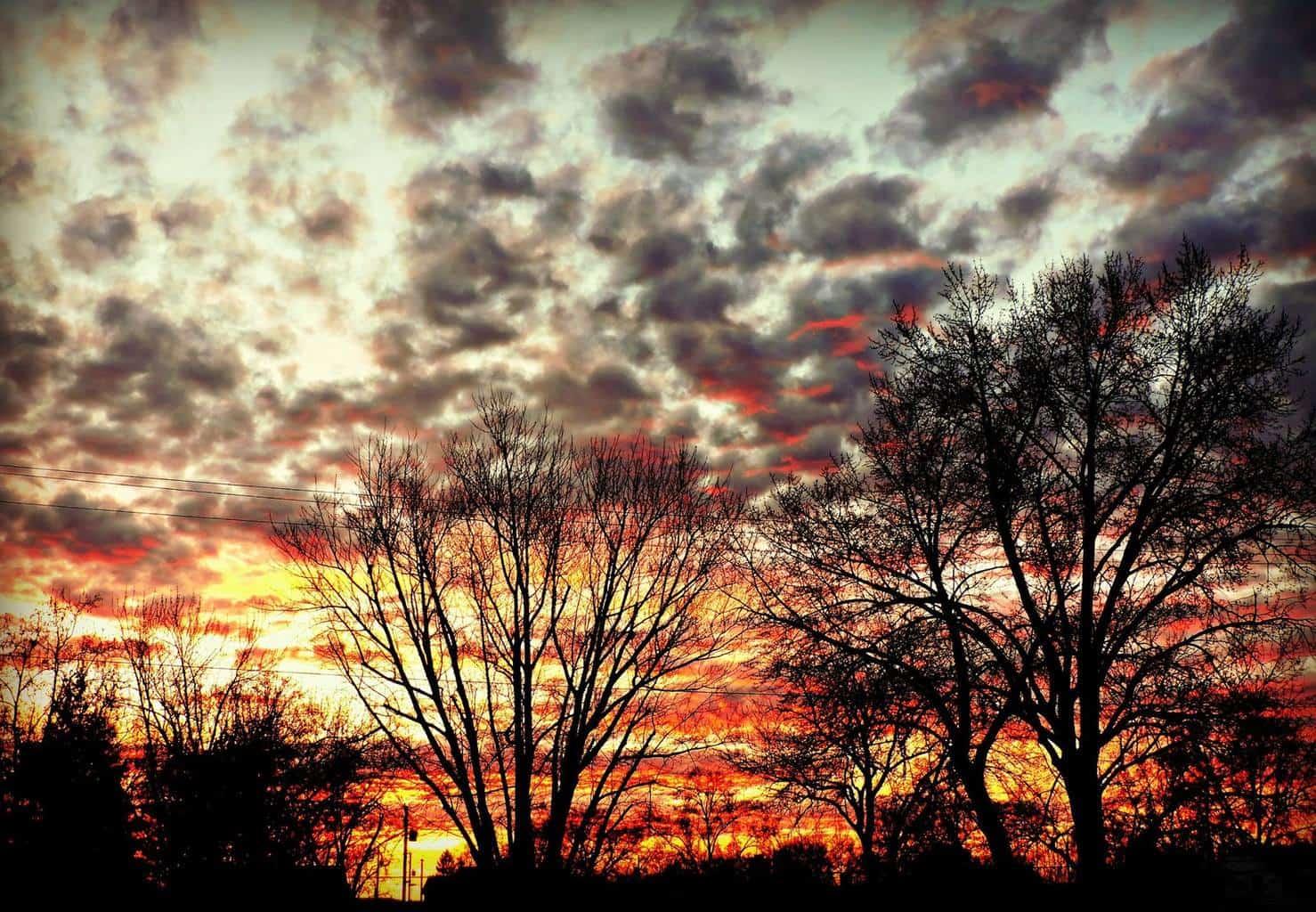 Sunrise this morning! Richland, Wa