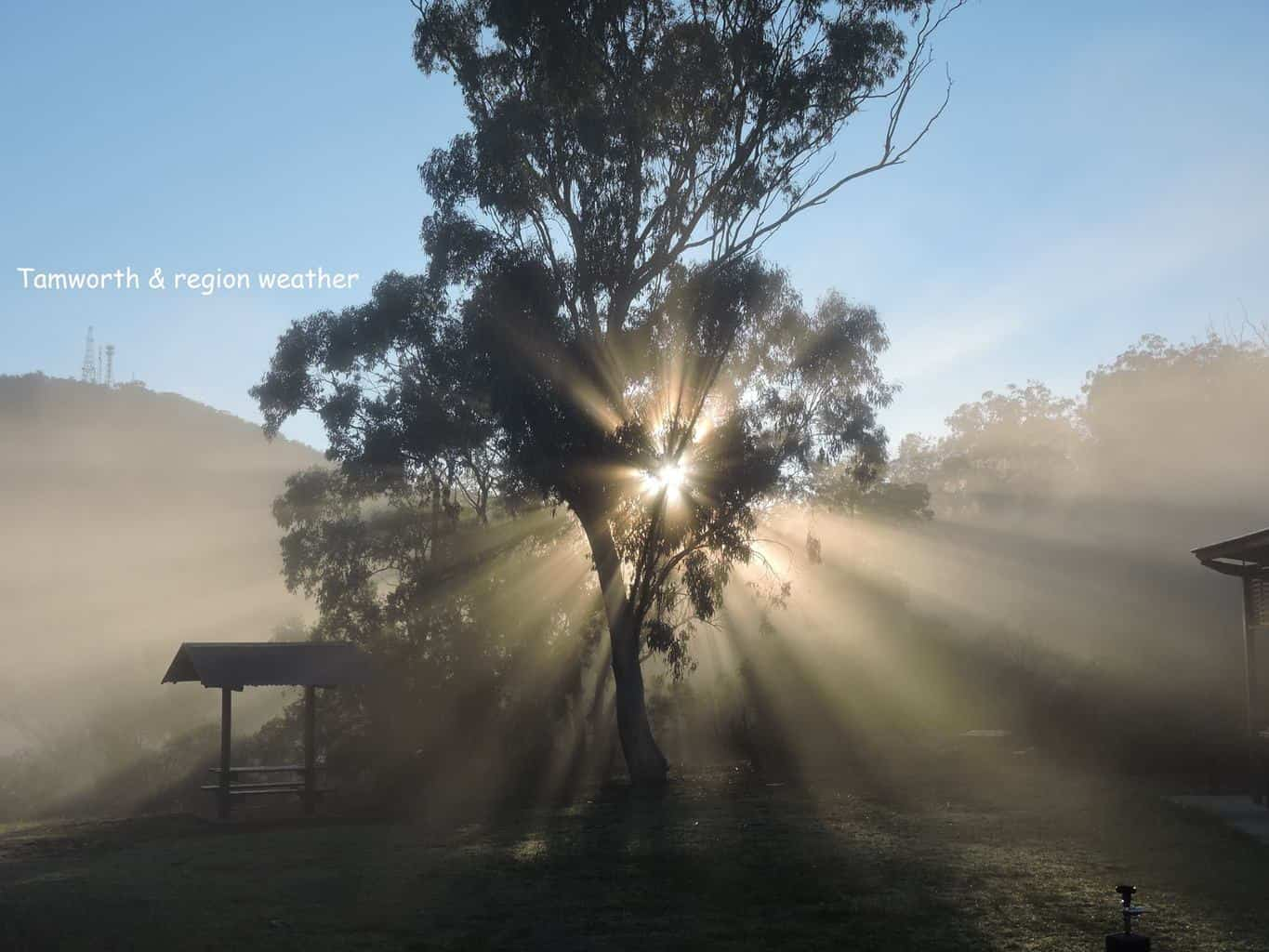 I simply love fog rays.
