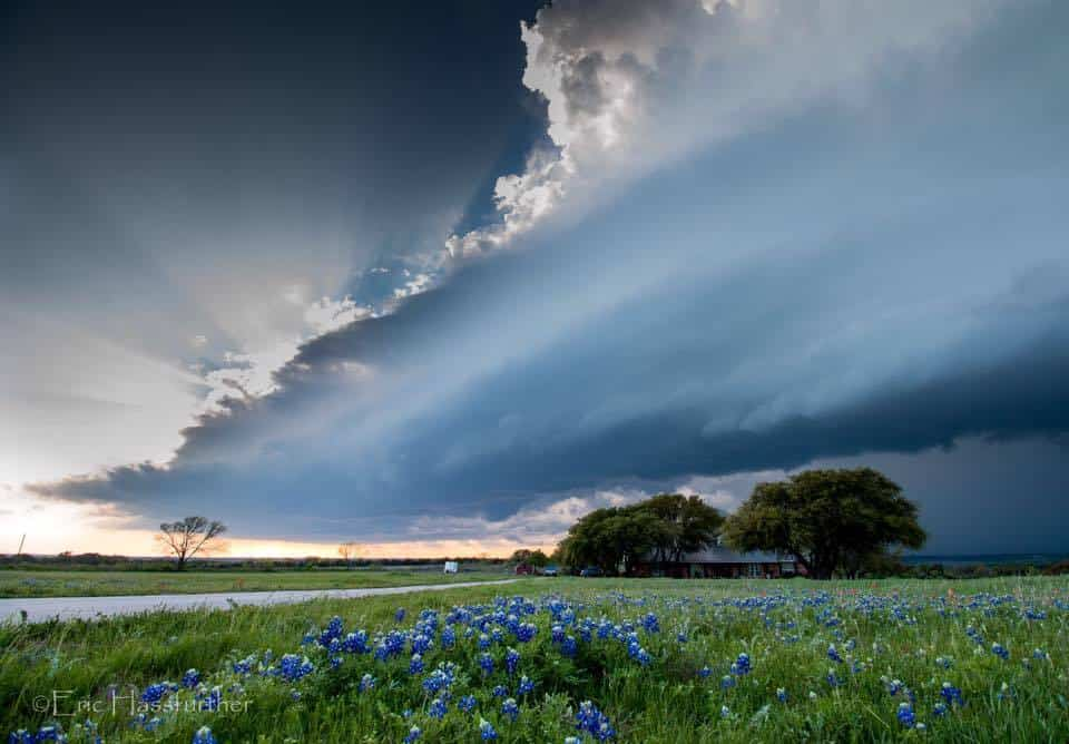 Bluebonnets and supercells go well together! (3-30-2016, Turnersville, TX)