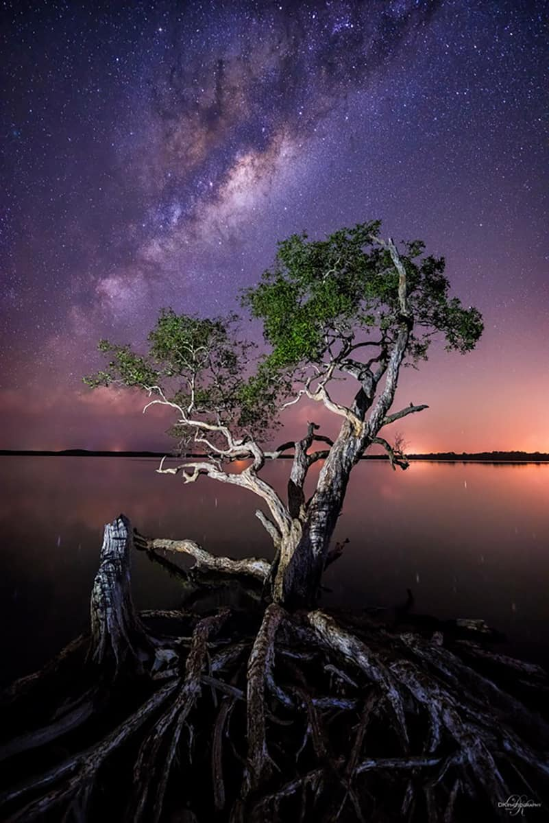 WOO! After 6 years of shooting this tree at Noosa, Australia trying to capture the milky way, we FINALLY GOT IT!!! Every time we've been up there it rains or cloudy etc, but a few days ago...it all came together for us..