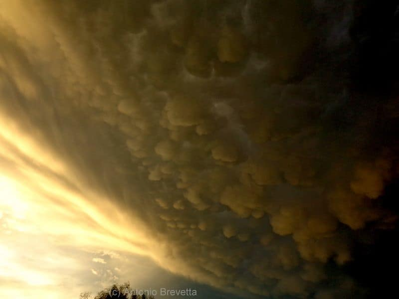 Amazing view at sunset... A big storm and its mammatus clouds painting the sky... Photo taken last year in Santiago del Estero, Argentina... Sony DSC H90