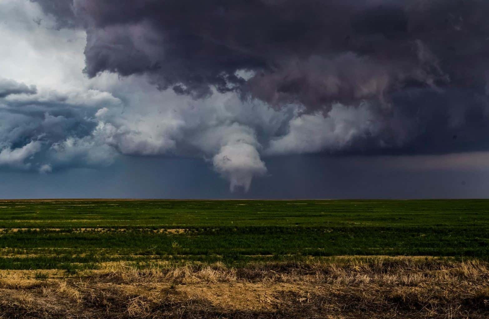 Eads, CO multi vortex tornado on 4.15.16. Thought this would be a fun one to open for title suggestions.....and GO!