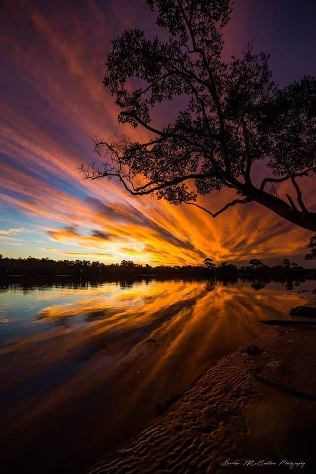 Got treated to an awesome sunset this afternoon on the Sunshine Coast, Qld, Australia. This was taken along the Eudlo Creek in Maroochydore.