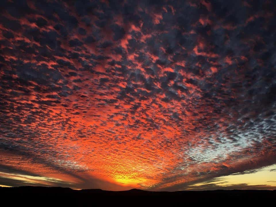 Absolutely spectacular sunset here tonight!!!!!! South East Queensland Australia