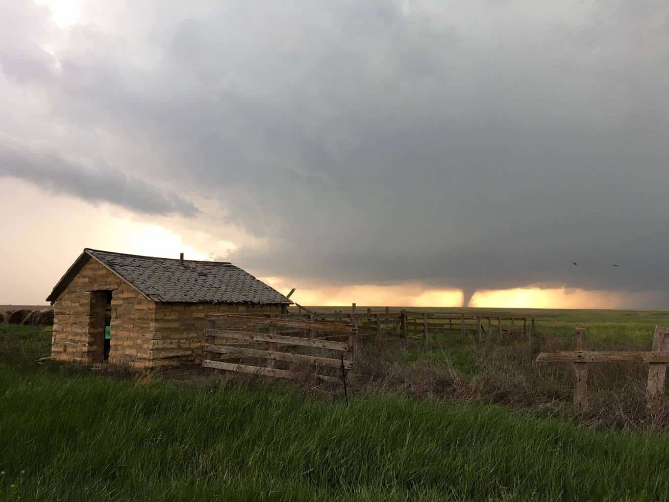 Tornado near Ness City, KS about 2 hours ago. Taken with iPhone