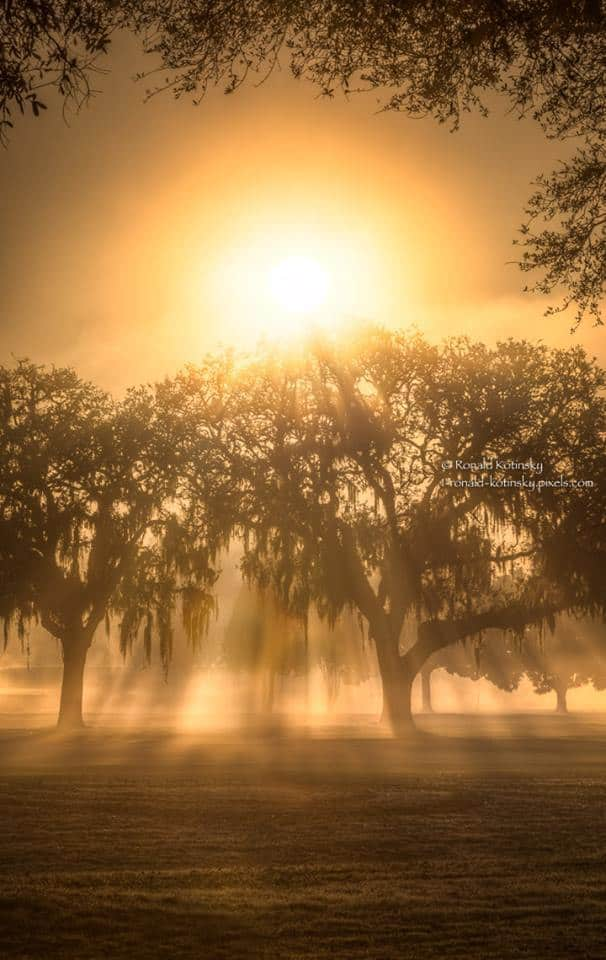 Curtain of Light - Foggy February 2017 - Florida — at Tampa Bay.