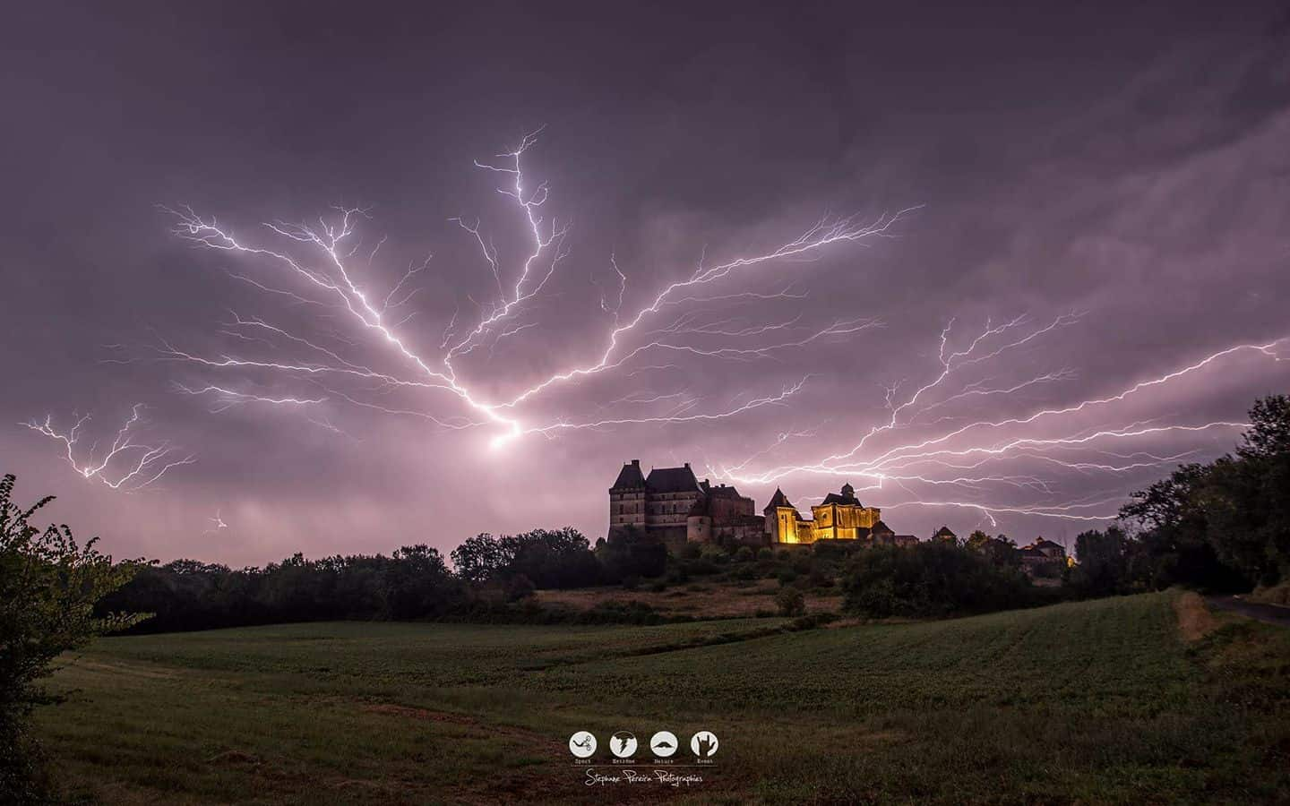 My Best photo of 2016!!! haughtiness goes hunting with an improvised but successful interception! Biron's castle, Dordogne, France