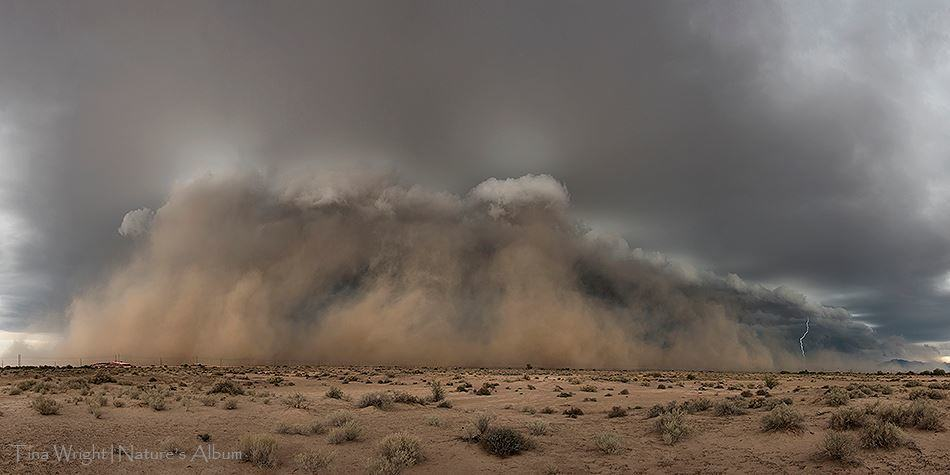 This was a very late season dust storm in Arizona - November 3, 2016. It formed right in front of me and had quite a bit of lightning in it. One of the most unique dust storms I have seen!!