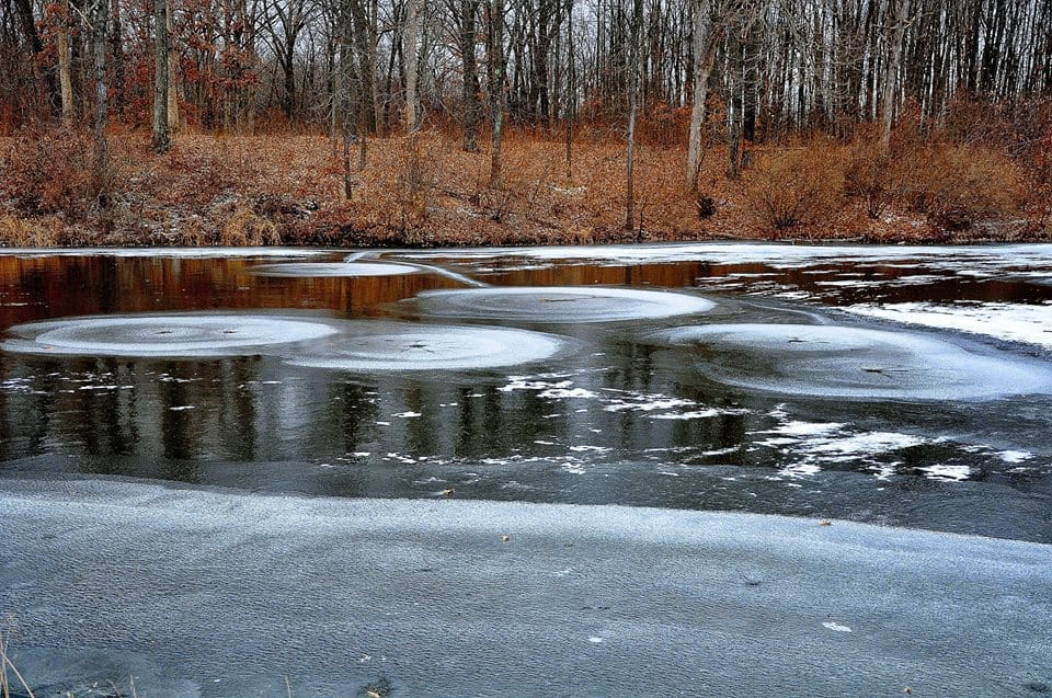 These are ice circles. They are rare to see. Mostly in rivers when the movement of the water freezes very fast. I caught this in a small pond by my house. The temperature was 4 degrees below zero that day. I was blessed to get these pictures.