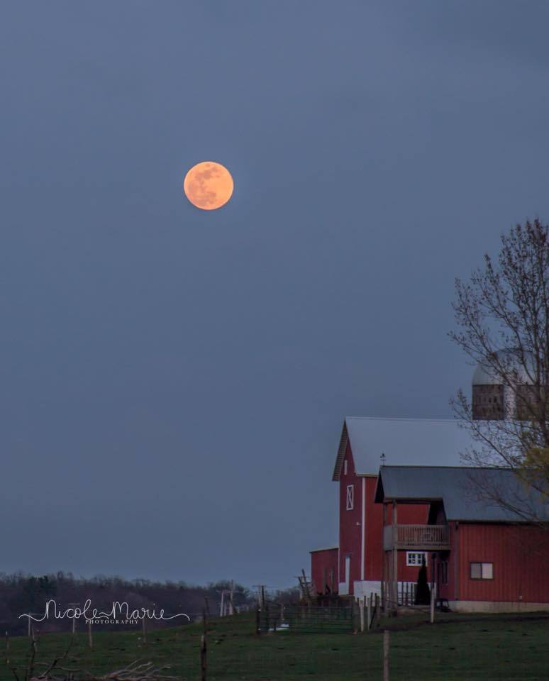 Moon rise over our farm tonight