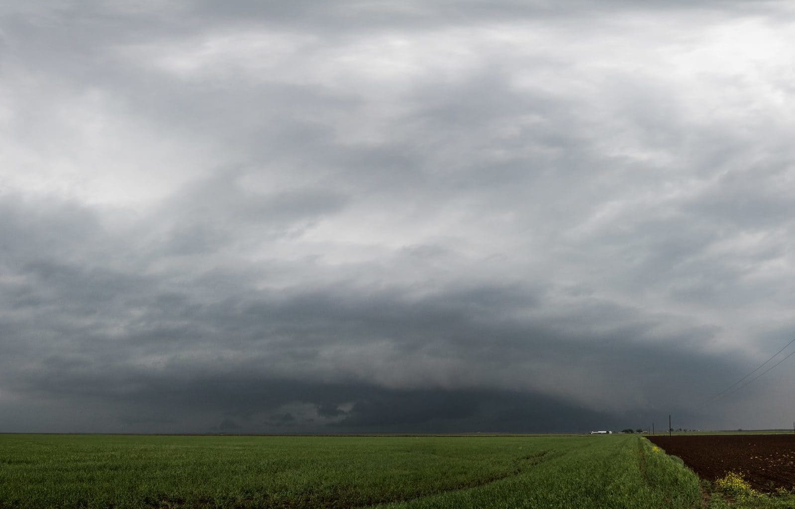 Shelfie from Tuesday. RIP to the chasers we lost.q