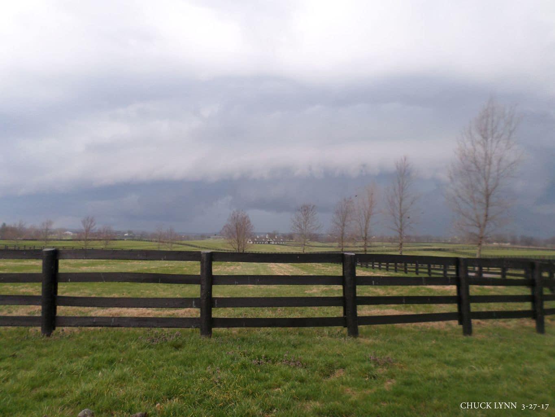 Versailles, Ky Ashford Stud Thoroughbred Horse farm