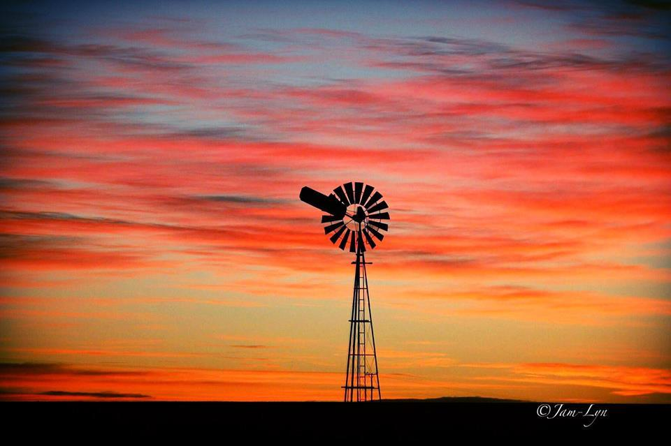 Every sunrise is amazing but some are just truly spectacular...... South  East Queensland Australia