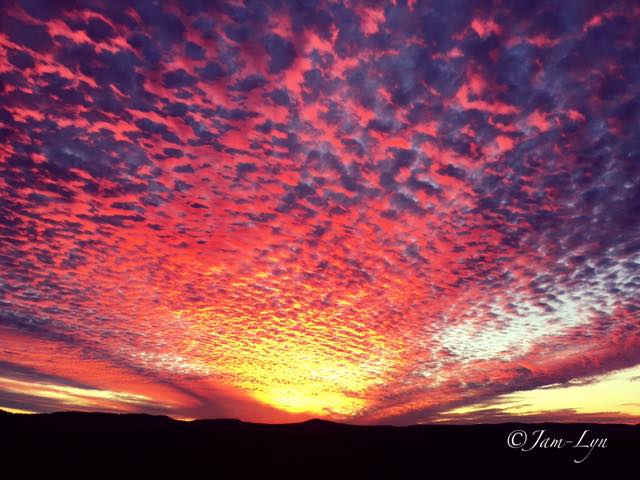 One of the most amazing and magical sunsets that I have ever witnessed let alone been able to capture. The colours of the sky and clouds were truly incredible. I hope you love it as I do. Taken last year. Clifton Queensland Australia